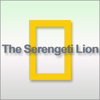 Go in the field with the National Geographic photographers as they capture The Serengeti Lion, the Vumbi pride, like never before with the help of a robot tank, night-vision goggles, and more.